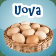 Tutti i tipi di uova