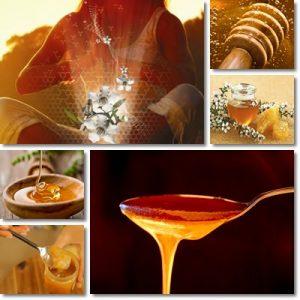 Il miele di manuka MGO™ e le sue proprietà
