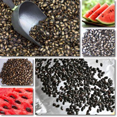 semi di cocomero piccoli