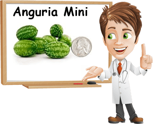Anguria mini