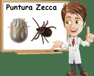 Il morso di zecca. Come comportarsi, pericoli e precauzioni