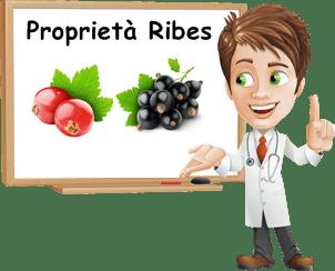 Proprietà Ribes