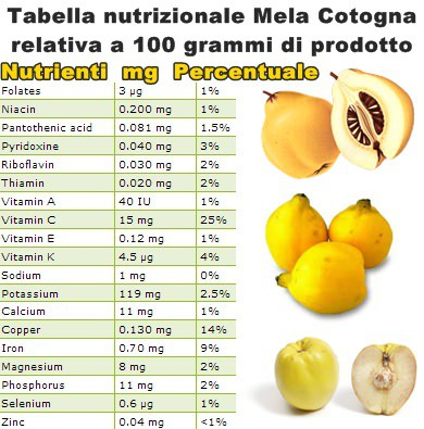 Tabella nutrizionale Mela Cotogna