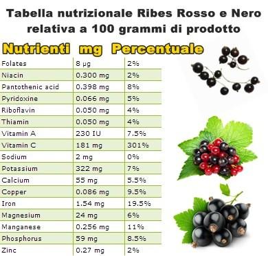 Tabella nutrizionale Ribes