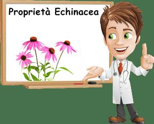Proprietà Echinacea