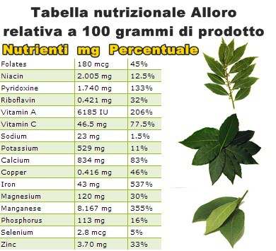 Tabella nutrizionale Alloro