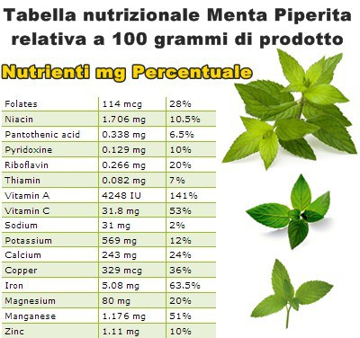 Tabella nutrizionale Menta Piperita