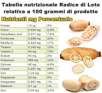 Tabella nutrizionale Radice di Loto