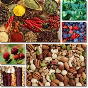 Potenti alimenti anti invecchiamento