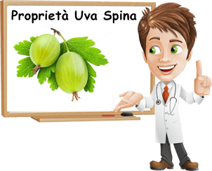 Proprietà Uva Spina