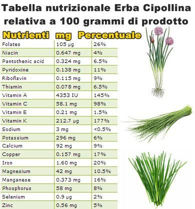 Tabella nutrizionale Erba Cipollina