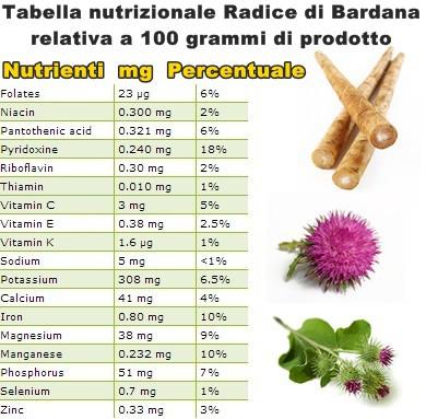 Tabella nutrizionale Radice di Bardana
