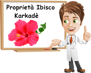 Proprietà Ibisco Karkadè