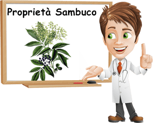 Proprietà Sambuco