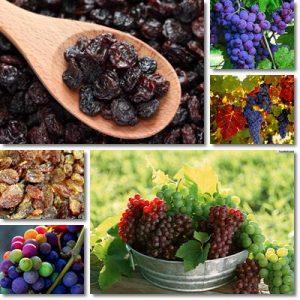 Proprietà e benefici uvetta passa sultanina