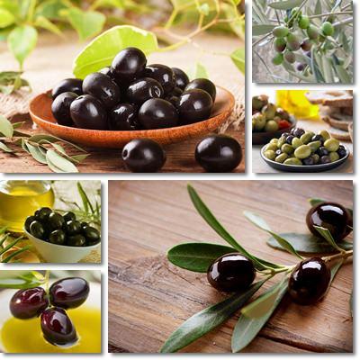 Proprietà e benefici Olive