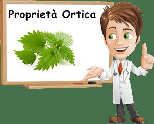 Proprietà Ortica