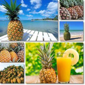 10 benefici Ananas