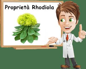 Proprietà Rhodiola