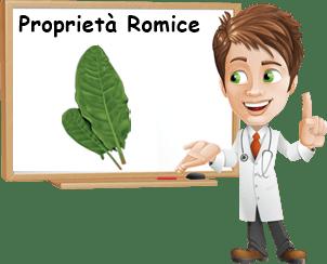 Proprietà romice