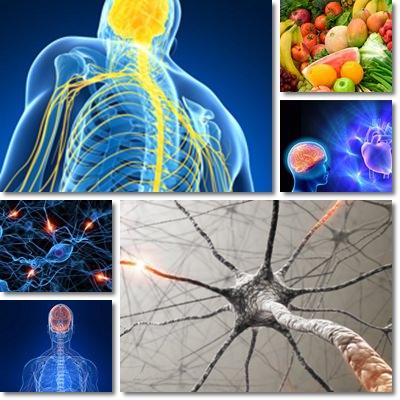Dolore nervo vago cause sintomi e cura