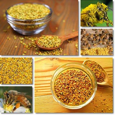 Polline api