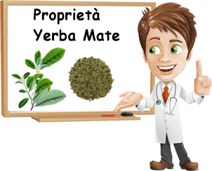 Proprietà yerba mate