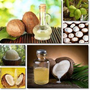 Proprietà e benefici Olio di cocco