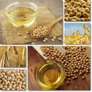 Proprietà e benefici Olio di soia