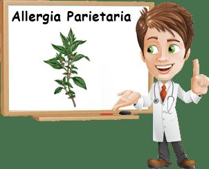 Allergia parietaria