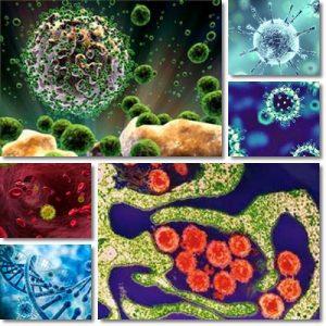 Mononucleosi: Cause, sintomi e cura