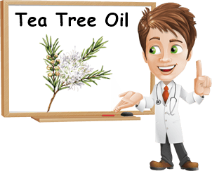 Proprietà tea tree oil