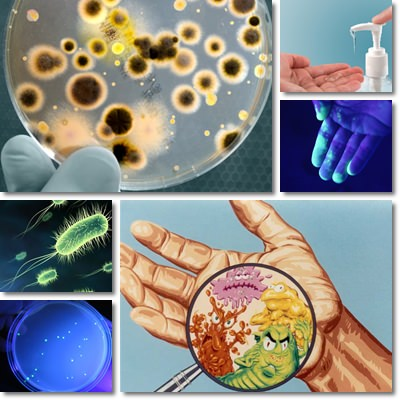 virus raffreddore comune