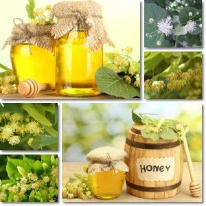 Proprietà e benefici Miele di Tiglio