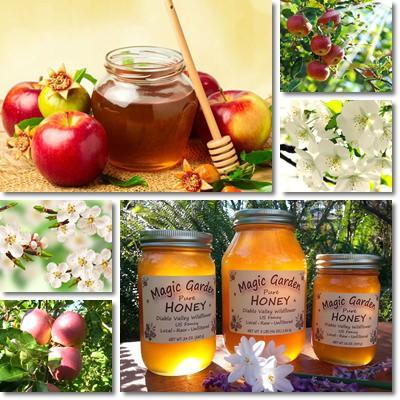 miele di melo