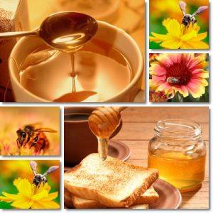 Proprietà e benefici Miele Millefiori