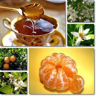 miele di arancio