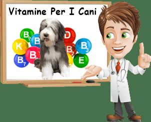 Vitamine per i cani
