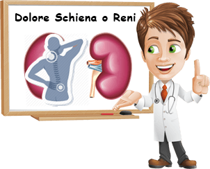 Dolore renale o schiena