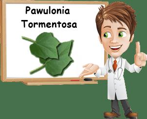 Proprietà Pawuolonia