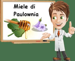 Proprietà miele di Paulownia