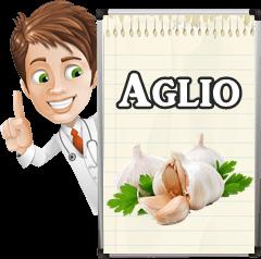 Come e quando seminare l aglio vitamine proteine for Quando si pianta l aglio