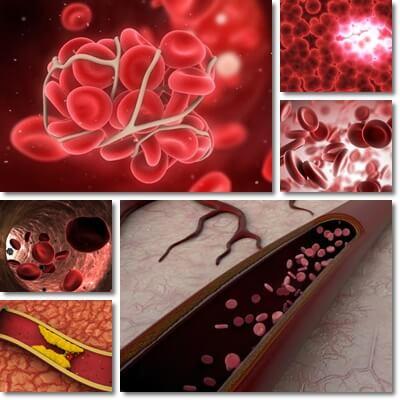 Come fluidificare il sangue