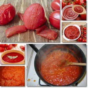 Proprietà e benefici Polpa di Pomodoro