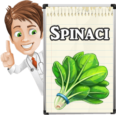 come seminare i spinaci