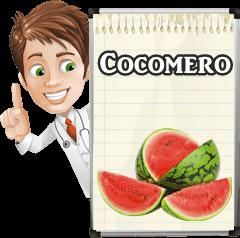 Come e Quando Seminare il Cocomero