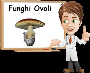 benefici funghi ovoli