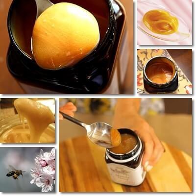 benefici miele di manuka