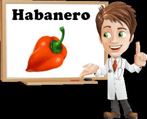 Benefici peperoncino habanero