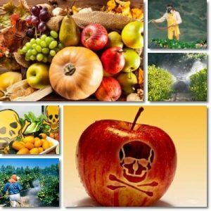 Frutta e Verdura Fanno Male